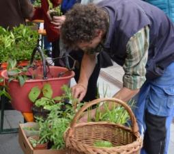 Gartengeflüster und grüne Kosmetik 06.05.2017 – Kurtatsch