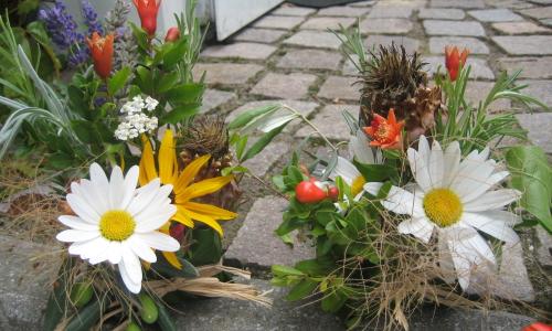 Gärtnern mit Kindern – Der grüne Daumen
