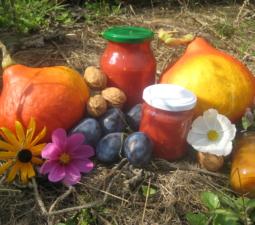 Gartenschätze einkochen, lagern, haltbar machen – 16.09.2017 – Kurtinig