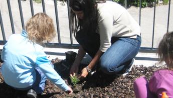 Blumen im Schulgarten setzen